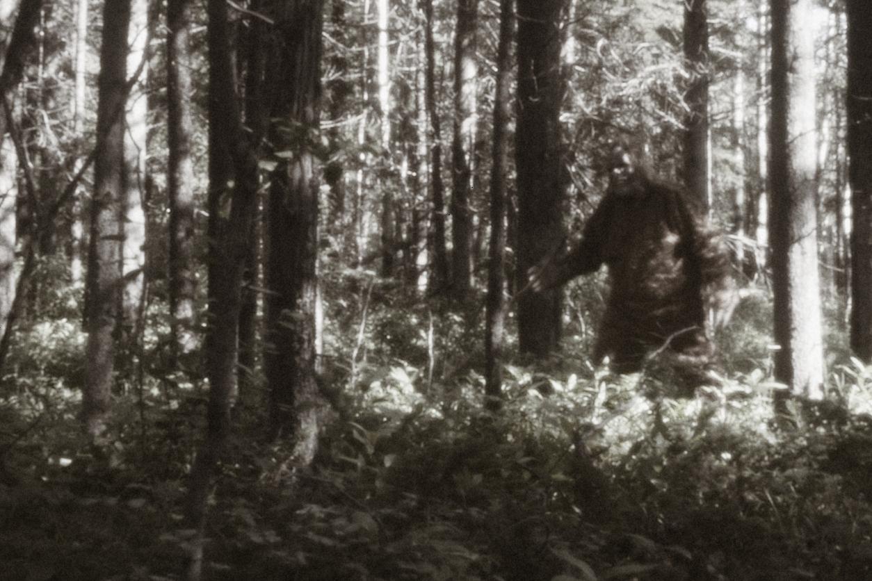 """Descoperire fascinantă despre existența celebrului """"Bigfoot"""". Ce au dezvăluit specialiștii"""