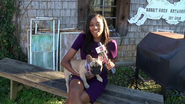 Locuitorii unui orăşel din Kentucky, SUA, au ales un câine pentru postul de primar