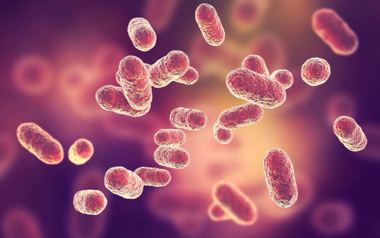 O altă epidemie a izbucnit în China. Sunt deja peste 6000 de cazuri. Infecția poate să dureze și un an