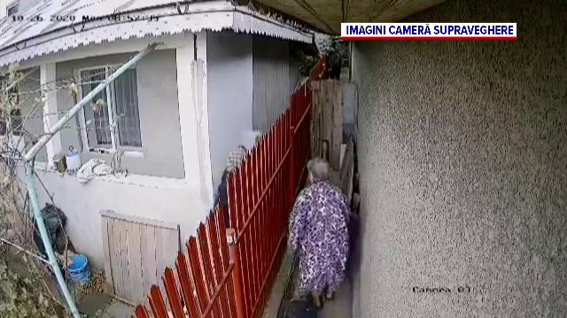 Cățelușa răpită de surorile pensionare din Galați pentru că le deranja lătratul ei a fost găsită moartă