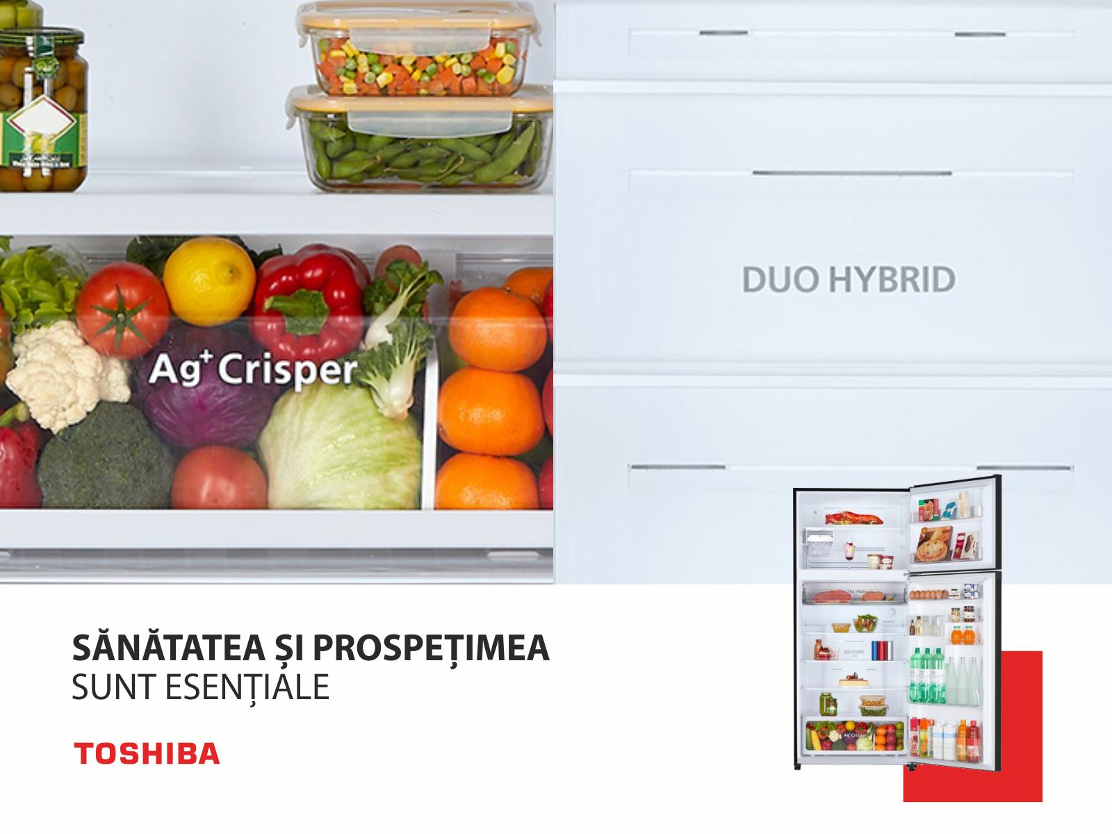 (P) 5 motive pentru a-ți achiziționa frigiderul cu două uși Toshiba GR-RT820PGJ-PGB