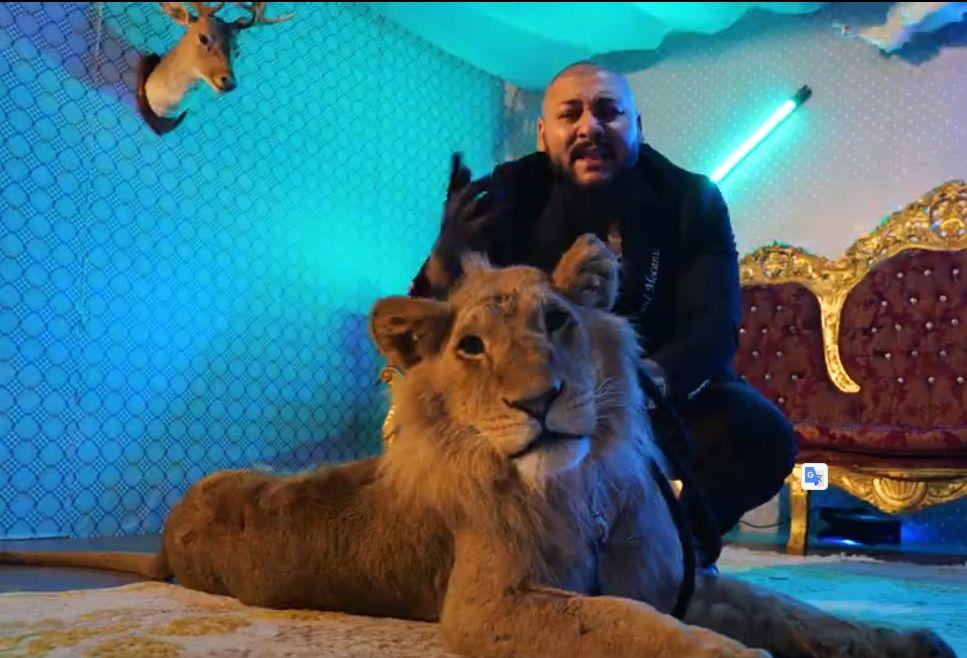 Dani Mocanu a promis că le arată fanilor leul, dar i-a păcălit. Clipul său a ajuns însă numărul 1 în trending pe YouTube