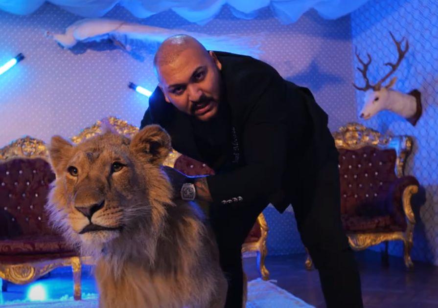 Cui aparține leul din clipul lui Dani Mocanu. A fost găsit într-o menajerie din Dâmbovița
