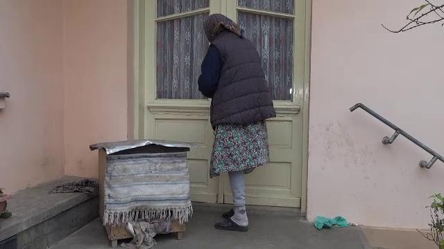 Bătrână din județul Arad, jefuită de hoți în propria casă. Suma colosală furată dintr-un seif