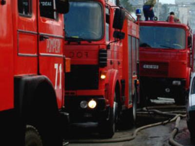 O ingrijitoare si 120 de animale au ars intr-un incendiu la un adapost de animale din Cluj