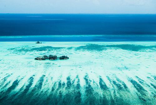 Casatorie in Maldive? S-ar putea sa fii