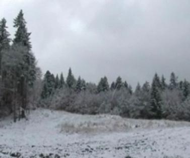 Zapada la Balea Lac! 15 minute pe snowmobil costa 100 de lei!