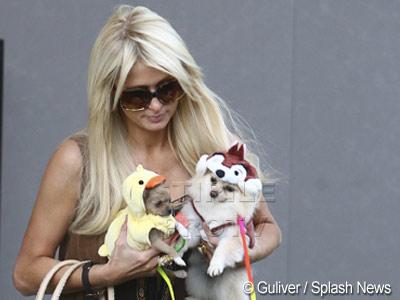 Paris Hilton, Dita Von Teese sau Mischa Barton la petrecerea cainilor