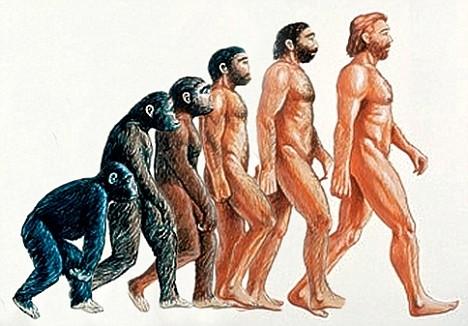 Inca o dovada a evolutiei oamenilor din maimute. Mutatia care i-a ajutat sa supravietuiasca