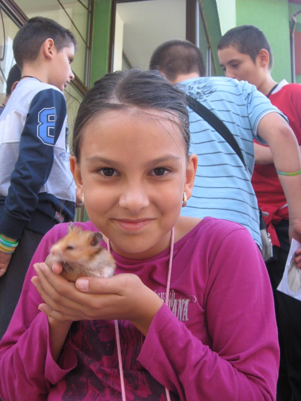 Soricei, pisici si papagali si-au dat intalnire, de ziua lor, in Padurea Ceala din Arad