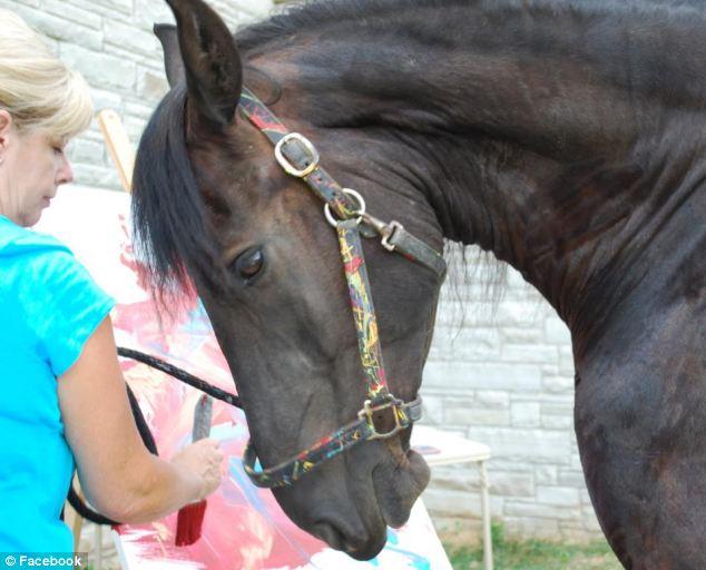 Povestea calului care isi poate castiga singur existenta si care a fost comparat cu un geniu