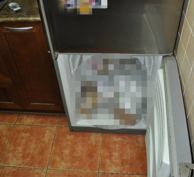 Doi bebelusi morti, gasiti in congelatorul unei femei din Spania. Ce a declarat mama in fata anchetatorilor