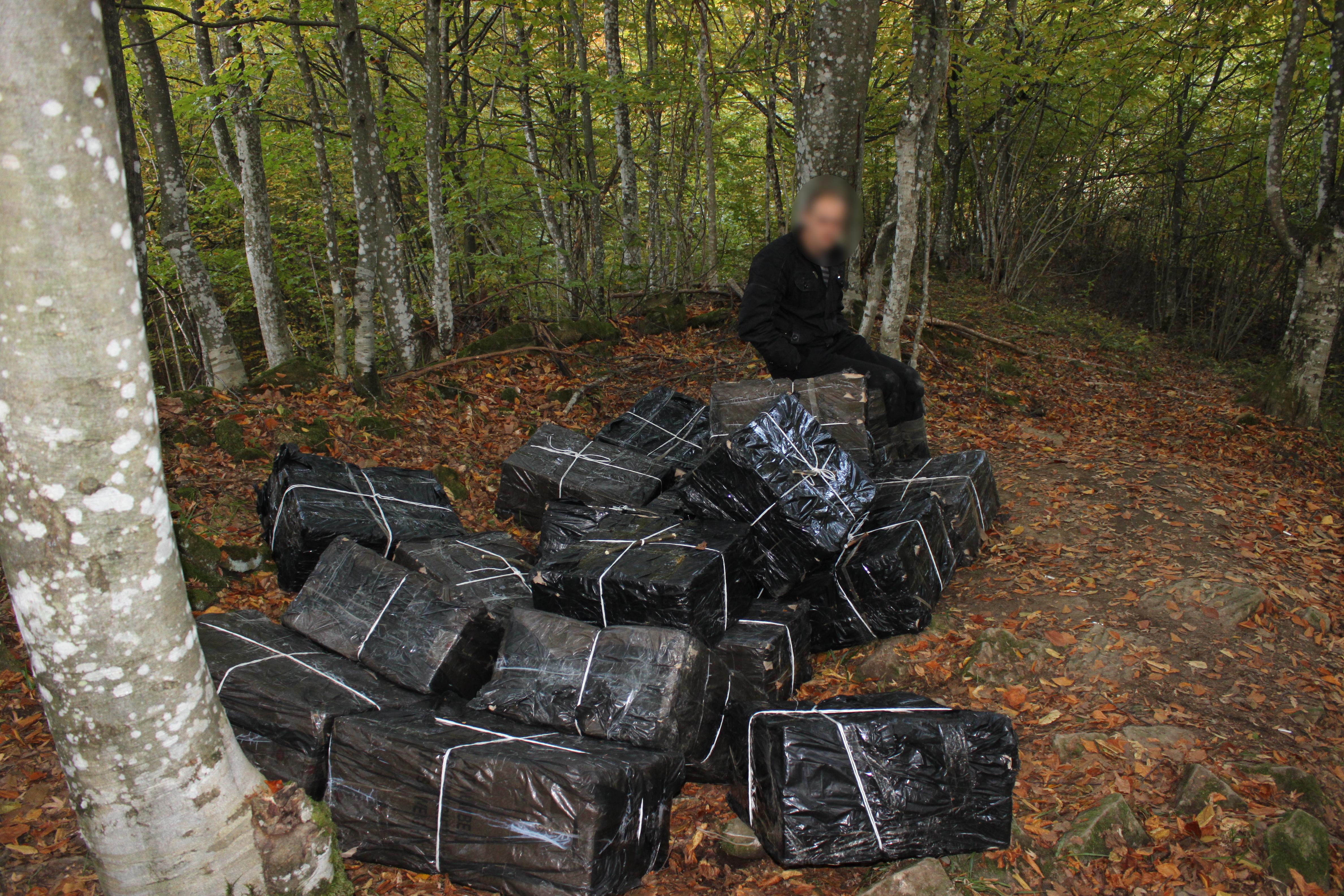 10.000 de pachete de tigari, in valore de peste 88.000 de lei, confiscate de politistii de frontiera