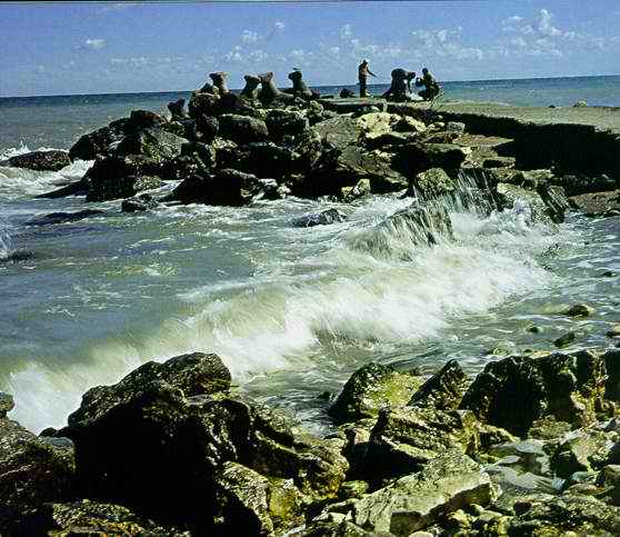 Ce a filmat un barbat din Constanta in Marea Neagra: