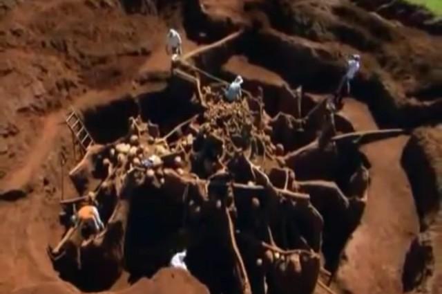Au turnat ciment intr-un musuroi de furnici. Surpriza uriasa pe care au trait-o cand au inceput sa sape. VIDEO