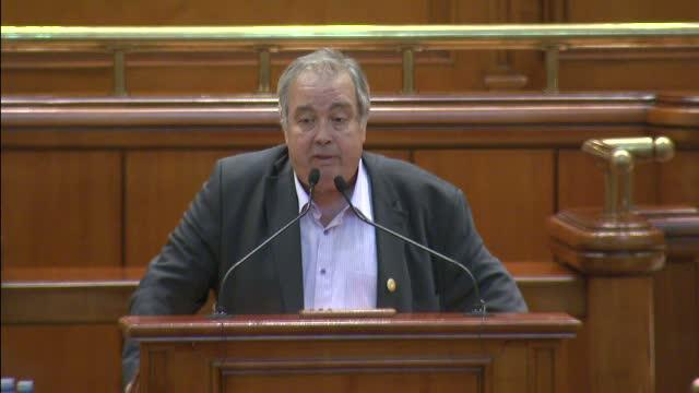 Votul pentru legea pensiilor speciale, amanat. Deputat PSD: