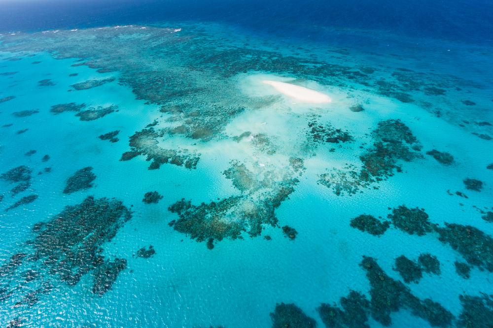 Oameni de stiinta avertizeaza: reaparitia El Nino ar putea provoca un dezastru. Pericolul pentru Marea Bariera de Corali