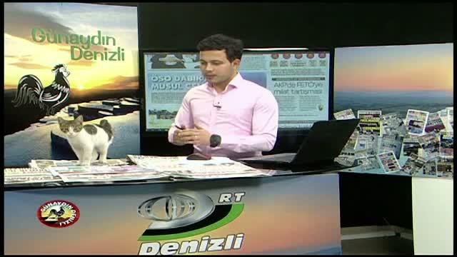 Aparitie surpriza in timpul unui jurnal de stiri, transmis in direct de o televiziune turca