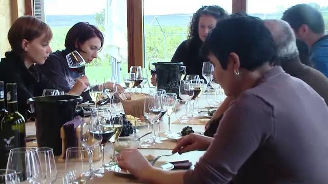 Productia de vin a crescut cu 30% fata de anul trecut in Romania. Cat costa o sticla de vin din struguri stafiditi