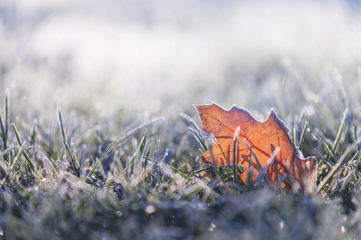 Vremea azi, 23 noiembrie. Vin zile frumoase, dar cu dimineți în ceață
