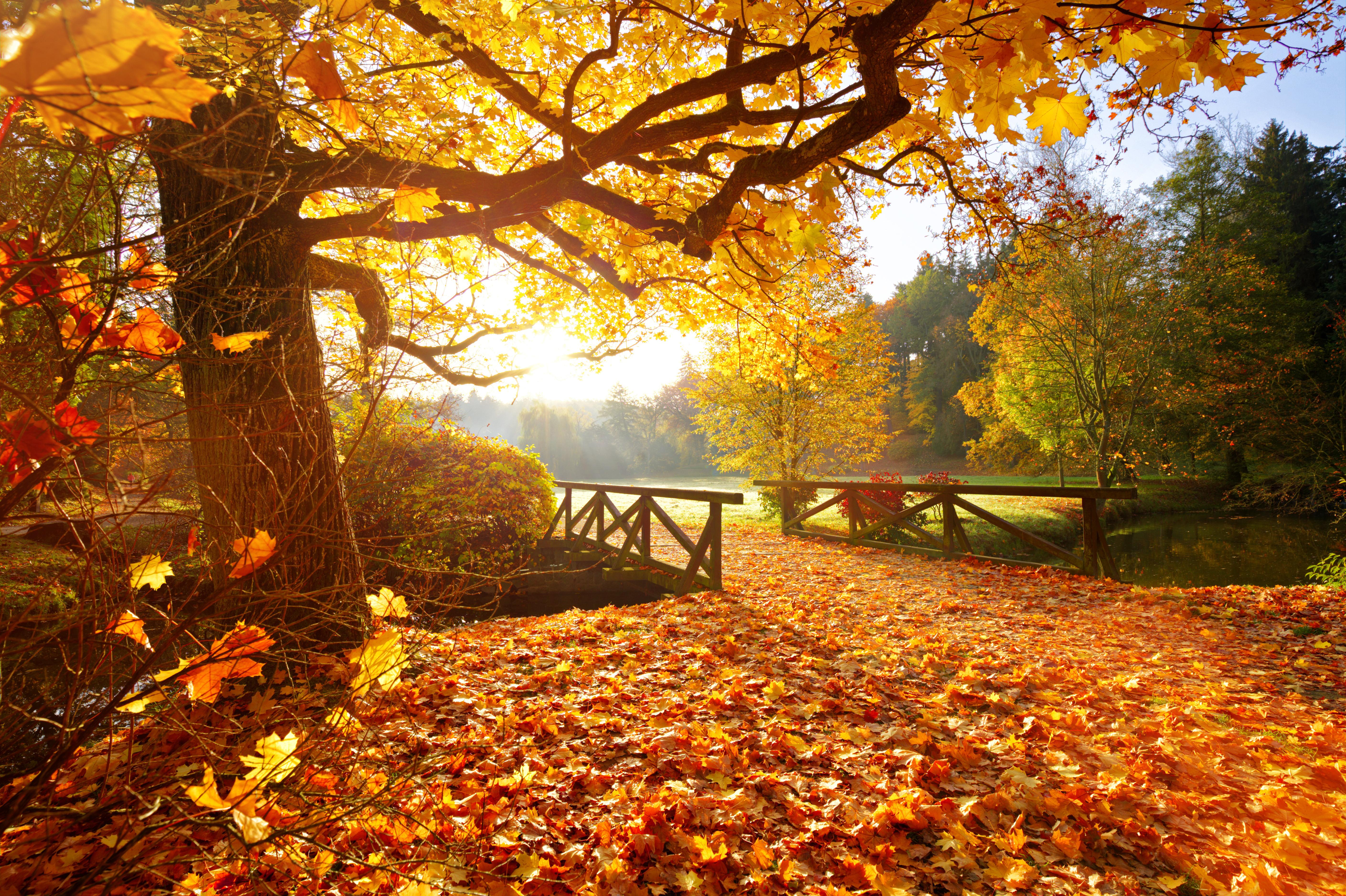 Vremea miercuri, 8 septembrie. Zi călduroasă și soare în toată țara