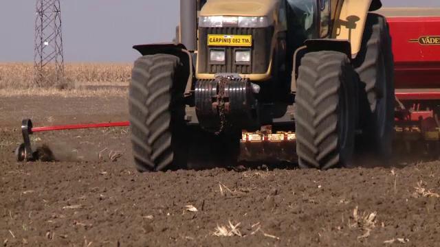 Seceta severă distruge culturile din România. Ar putea urma un val de scumpiri