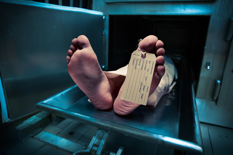 Cadavrele unor donatori de organe, tranșate și vândute pe bucăți de un laborator din SUA