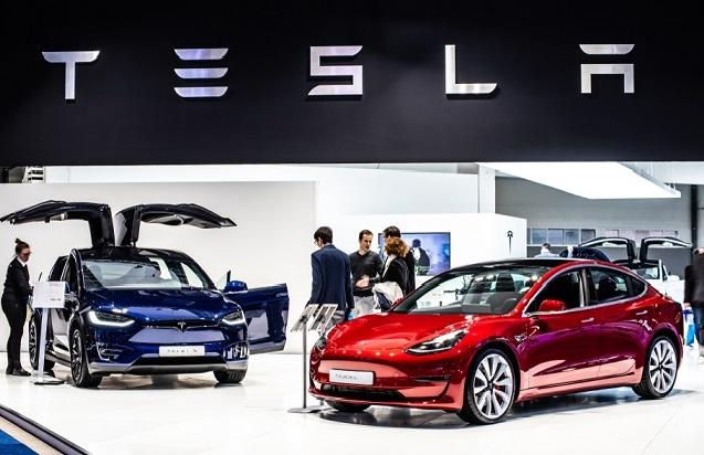 Motivul pentru care construcţia fabricii Tesla din Germania a fost suspendată