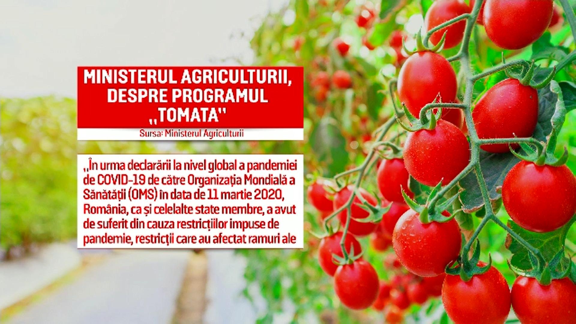 """Roşiile româneşti se vor scumpi în sezonul rece. Ministerul Agriculturii renunță la programul """"Tomata"""""""