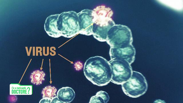 Motivul pentru care faringitele pot ajunge la un minim istoric în acest sezon rece