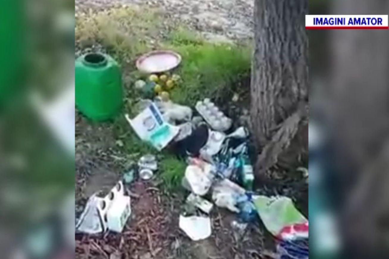 Tone de gunoaie în Delta Dunării, lăsate în urmă de turiști. Au ascuns resturile în tufișuri