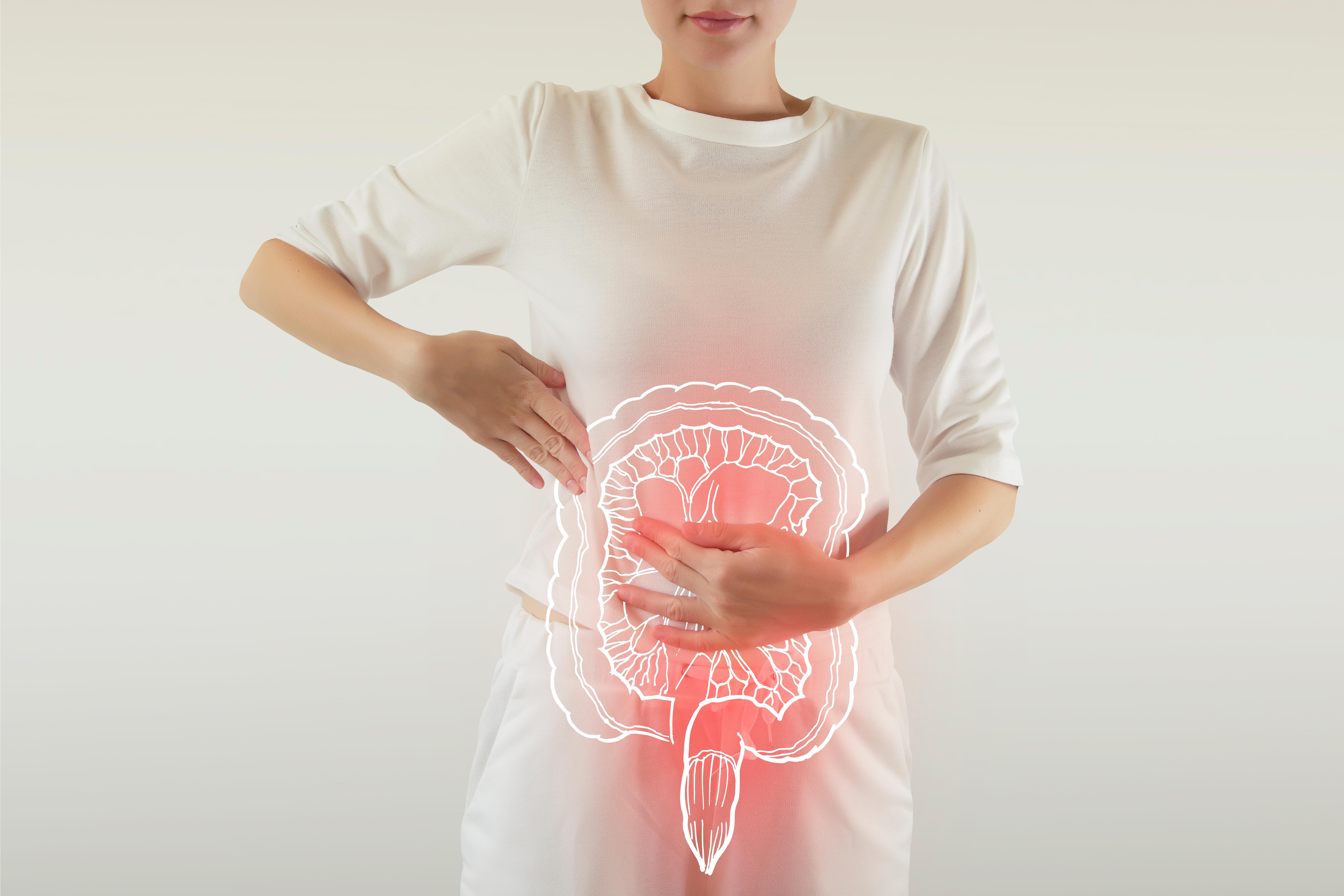 Cum se diferențiază prebioticele și ce înseamnă aportul de fibre vegetale pentru reglarea tranzitului intestinal?