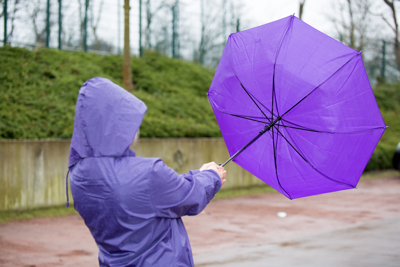 Atenționare de vânt puternic în două județe. Vremea va fi deosebit de rece în mare parte a țării