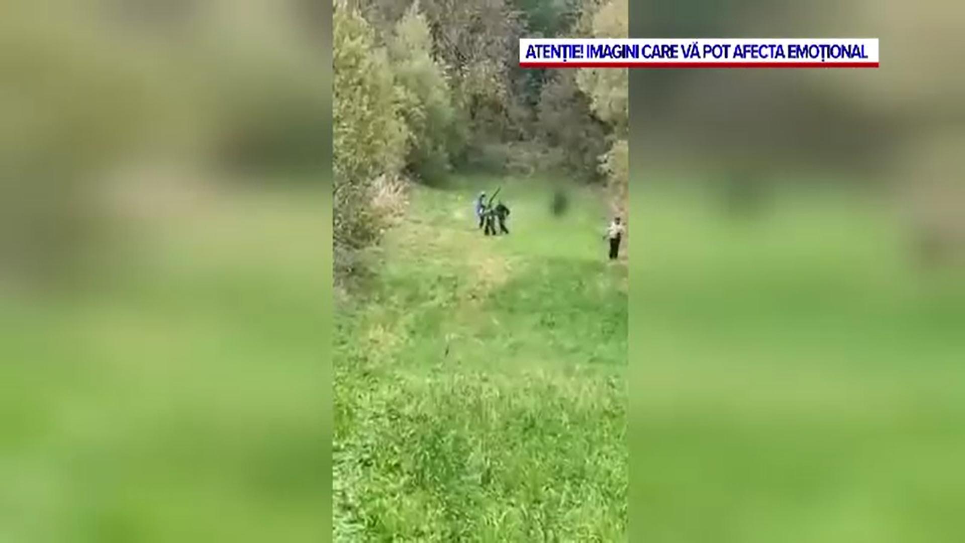 Zeci de localnici au schingiuit și omorât un pui de urs. Ultimele clipe de viață au fost filmate
