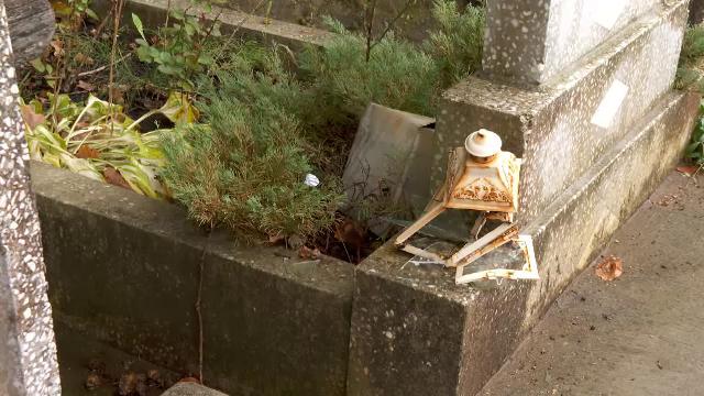 Un urs a provocat pagube într-un cimitir. Animalul a reușit să dărâme o cruce din ciment