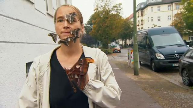 O femeie din Berlin își scoate în fiecare zi la plimbare fluturii. Insectele stau fără probleme la ședințe foto cu trecătorii