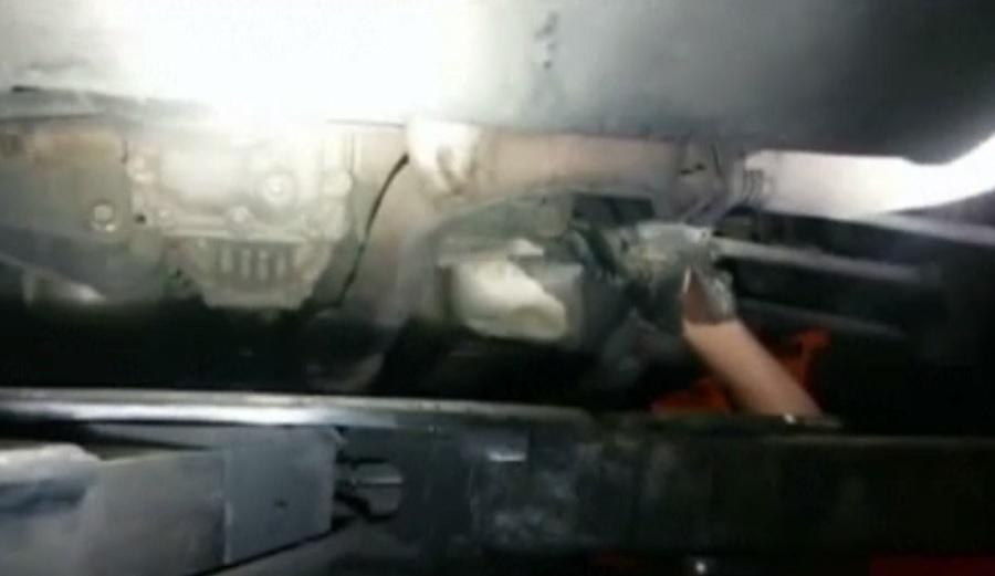 O pisică a rămas blocată în motorul unui autoturism din Sevilla. Cine a reușit să o salveze