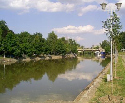 Lucrarile la podul Michelangelo inchid navigatia pe raul Bega. Cat timp va fi impusa restrictia