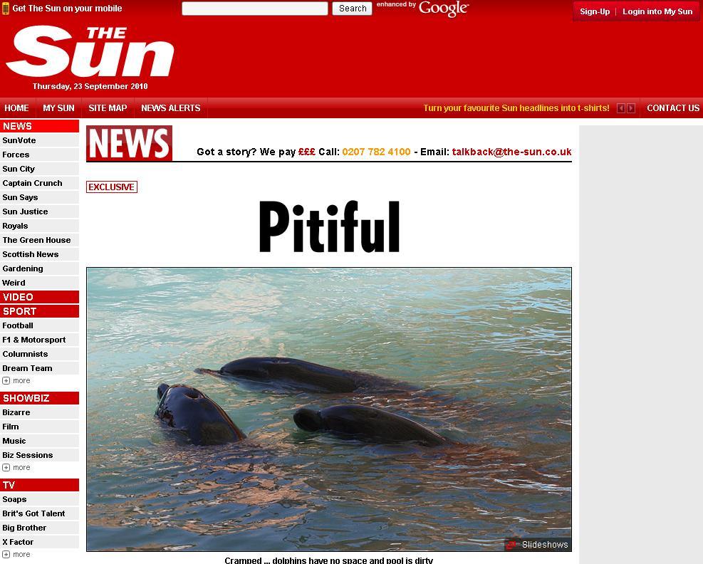 Socant! Delfini lasati sa inoate in propriile excremente