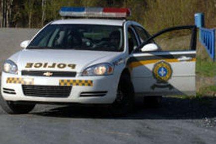 Unsprezece imigranti ilegali romani, arestati in Quebec