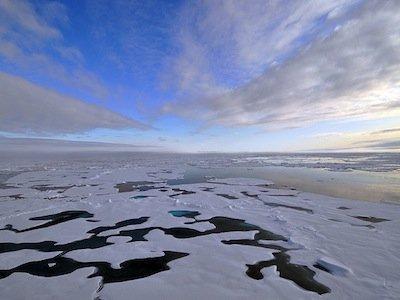 Gheata de la Polul Nord se va topi complet in urmatorii 4 ani.