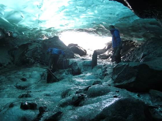 Secretul dezgropat de un ghetar in Alaska: ascundea o padure veche de 1000 de ani