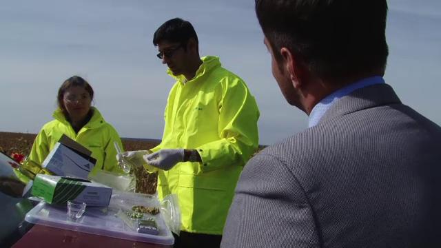 Lanuri cu soia modificata genetic gasite de Greenpeace, in Botosani. O comisie de urgenta a autoritatilor ancheteaza cazul