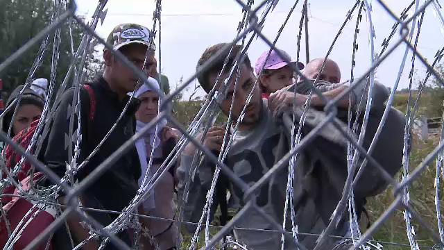 MAI propune marirea pedepselor, pana la 12 ani de inchisoare, pentru traficantii de migranti