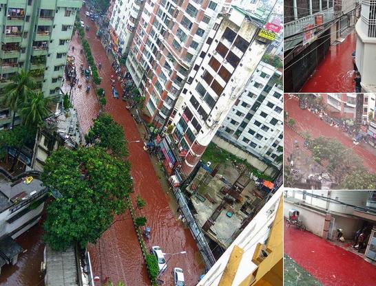 Orasul in care peste noapte au aparut rauri de sange pe strazi.