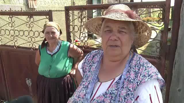 Primarii din Sibiu nu știu cum să facă dezinsecția pentru combaterea virusului West Nile