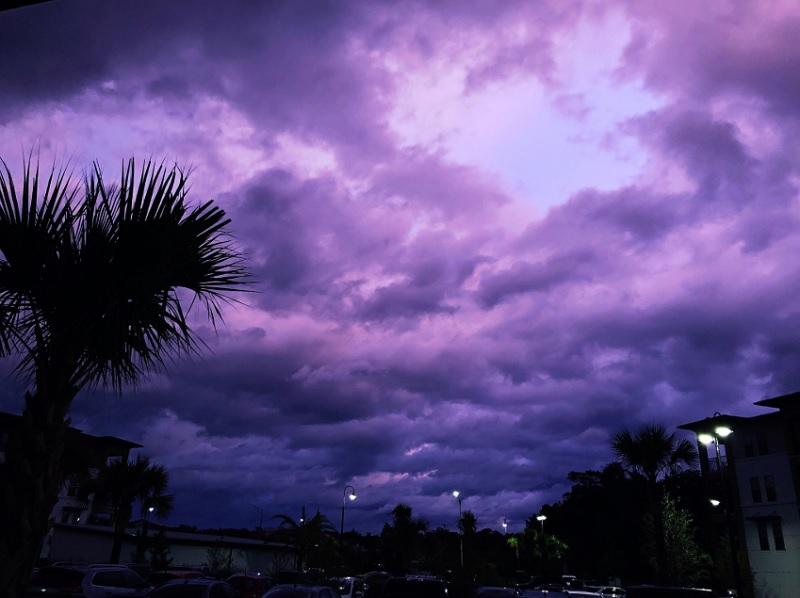 GALERIE FOTO Fenomen bizar în Florida după trecerea uraganului Dorian. Care e explicația