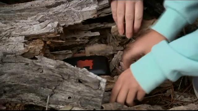 Vânătoare de comori cu ajutorul GPS-ului de pe telefon. Milioane de oameni au intrat în joc