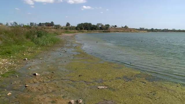 Apa lacului Techirghiol a scăzut cu un metru din cauza secetei extreme. Ce se întâmplă cu nămolul terapeutic
