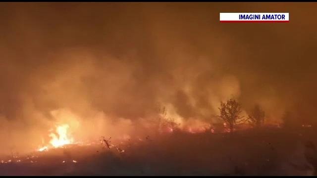 Sute de hectare de vegetație uscată au ars în județul Dolj, din cauza vântului